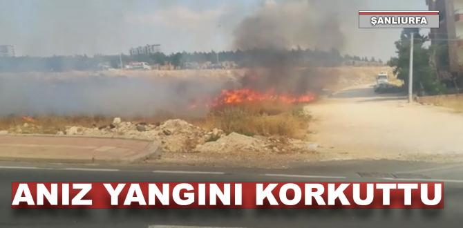 Şanlıurfa'da korkutan anız yangını